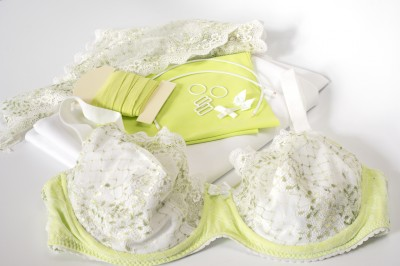 How much money do lingerie designers really make the - How much money do interior designers make ...