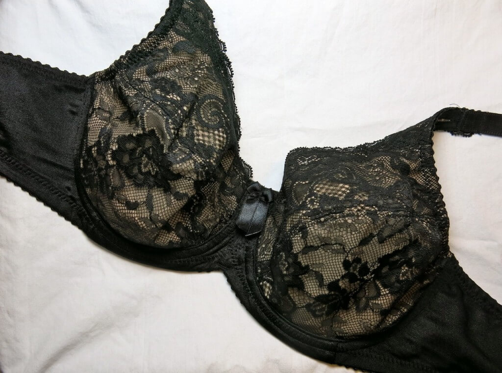 lunaire_lace_bra_review_4
