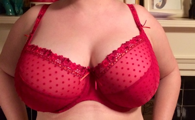 Curvy Kate Princess in Scarlet/Chili