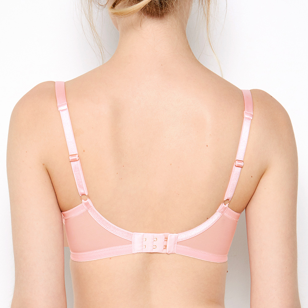 Back shot of Sophia Bra. Sheer, mesh, bra wings, and extended back band with double hook closure.