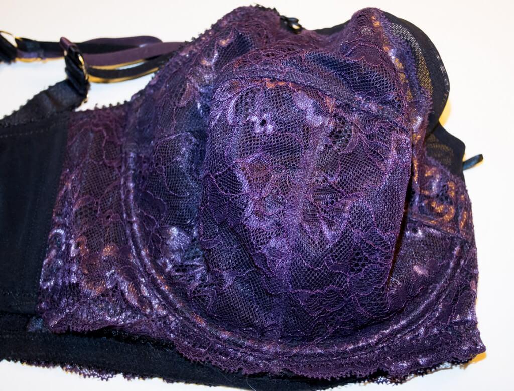 Unpadded Lace Bra Closeup